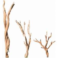 Ghostwood Branches - Sandblasted