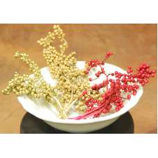 Dried Canella Berries - Canela Decorative Bunch