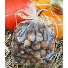 Acorn Nuts For Sale - No Caps
