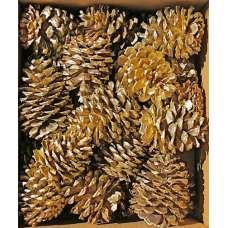 Gold Craft Ponderosa Pinecones