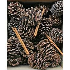 Pine Cones with Cinnamon Sticks