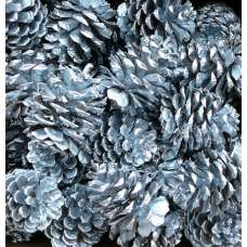 Silver Painted Ponderosa Pine Cones