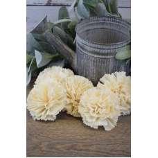 Sola Wood Carnation Flowers