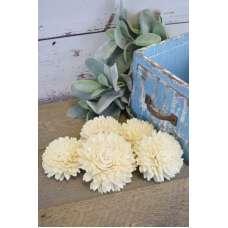 Wood Zinnia Flowers - Jiniya