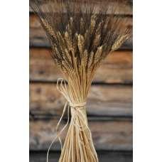 Blackbeard Wheat Bunch - 8oz