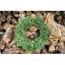 Preserved Boxwood Wreath 22 inch